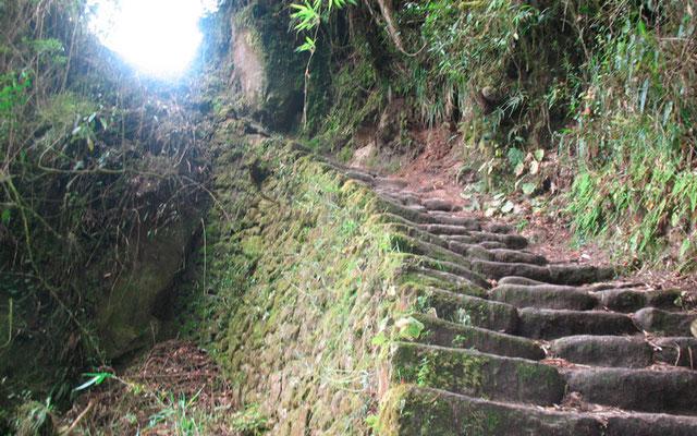 Inca Trail Short 2 Days Private